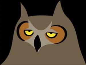 Bored Owl